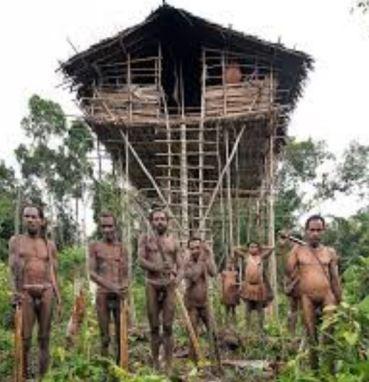Korowai Tribe Treehouse